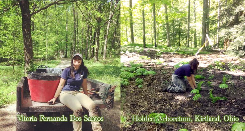2018 May Intern Vitoria Fernanda Working in the Garden