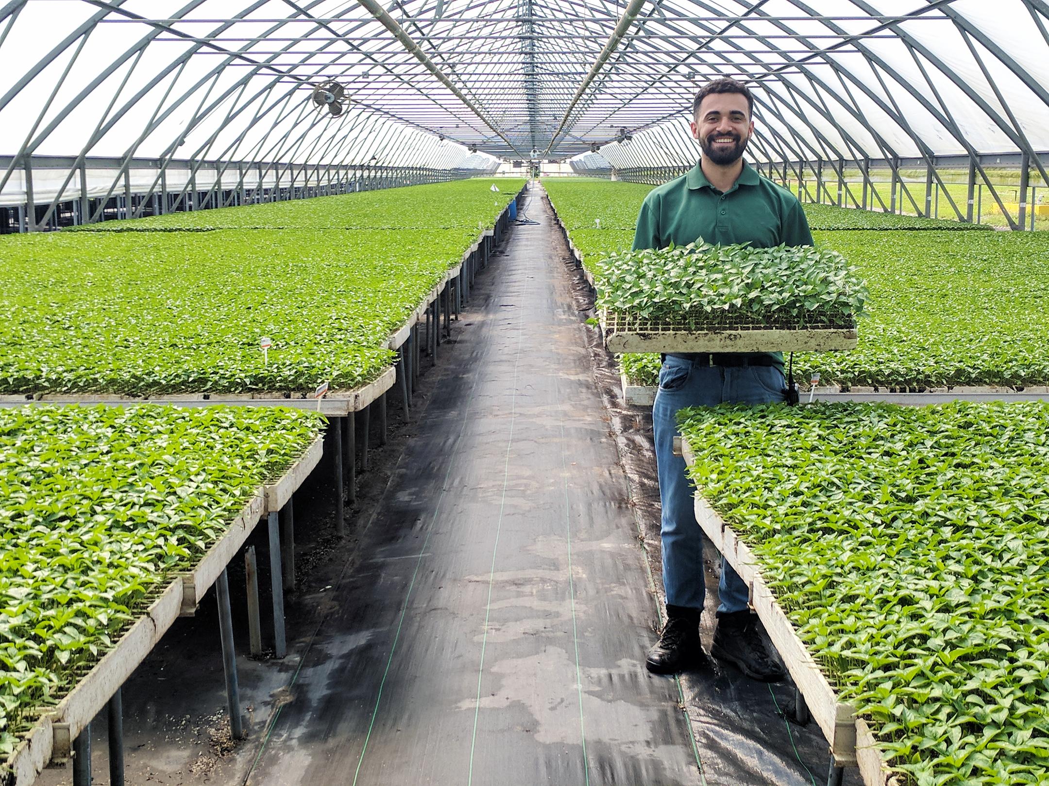 Horticulture Internship | The Ohio Program