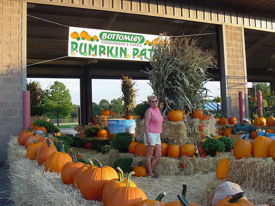 Bottomley Evergreen Farms -Punpkins