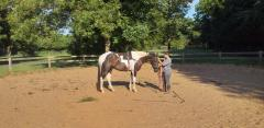 Intern Juanita training the horse