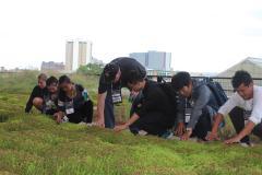 OSU Cultivars Trials 2-Cultivate18