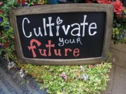 Cultivate 2017